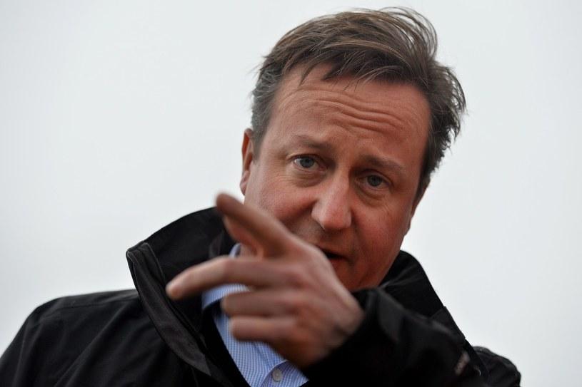 Słowa Davida Camerona odbiły się w Polsce szerokim echem /AFP