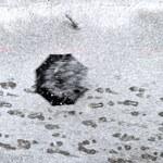 Służby usuwają skutki orkanu Fryderyka. 13,5 tysiąca odbiorców bez prądu