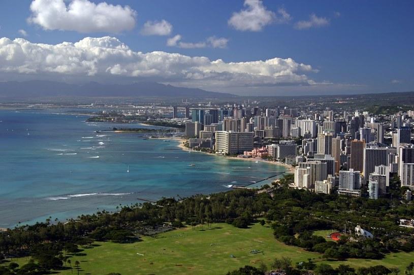 Słynna plaża surferów Waikiki /© Panthermedia