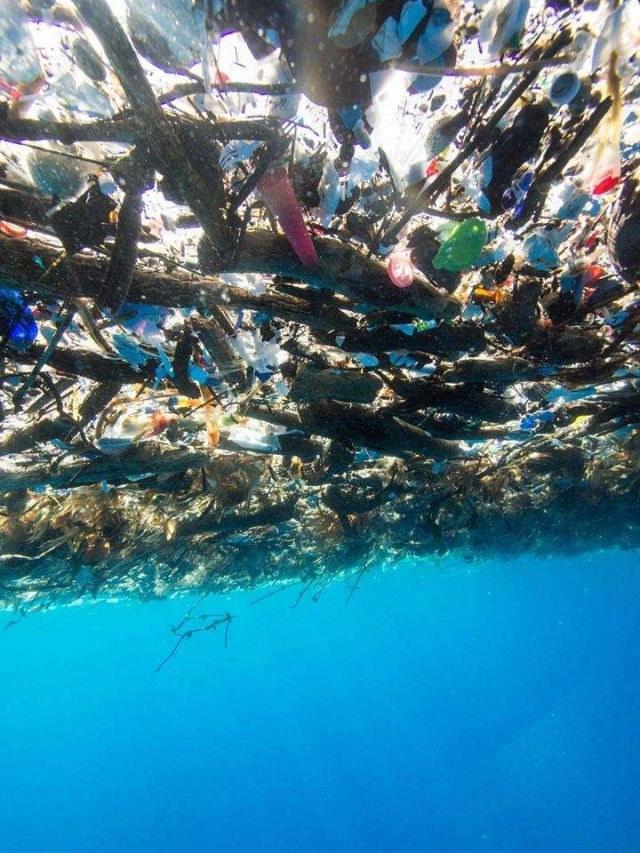 Śmieci w Morzu Karaibskim. Fot. Caroline Power /Zmianynaziemi.pl