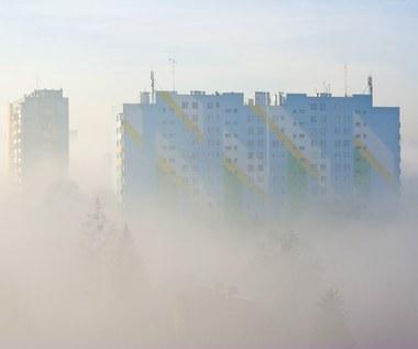 Smog - aplikacje, które dadzą nam znać o jakości powietrza
