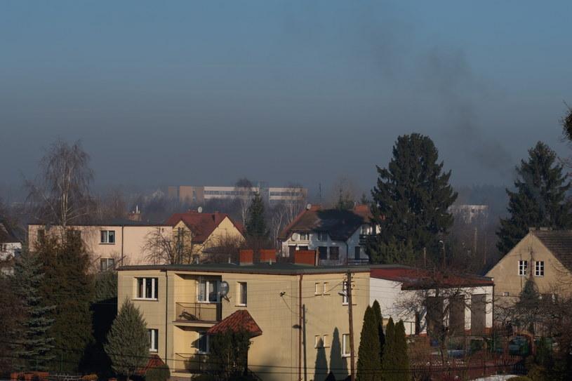 Smog nad budynkiem Uniwersytetu Adama Mickiewicza w Poznaniu /Jakub Kaczmarczyk /PAP