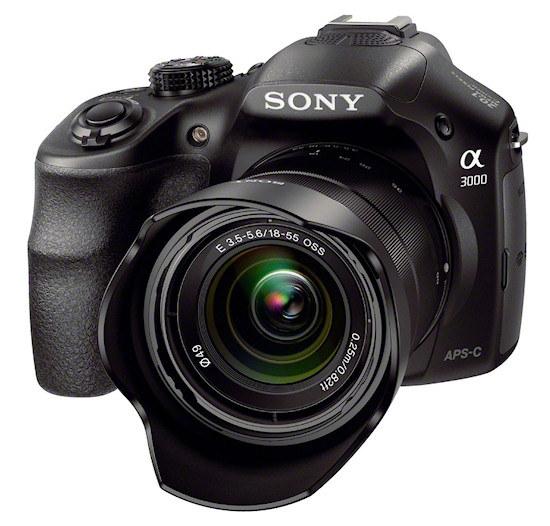 Sony Alfa 3000 /materiały prasowe