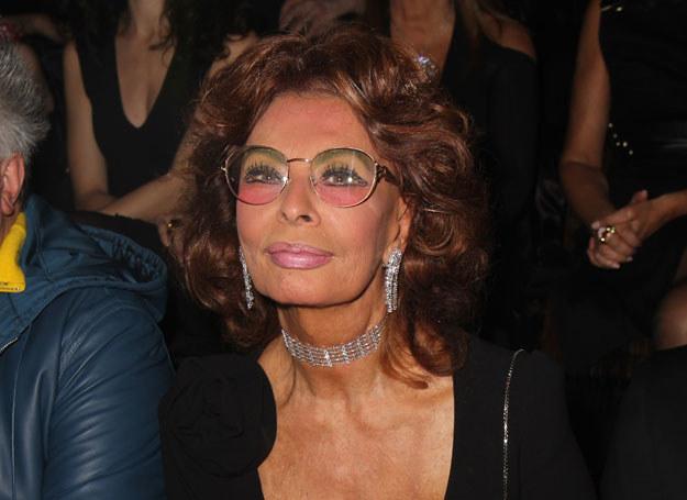 Sophia Loren to prawdziwa mistrzyni gotowania /Getty Images