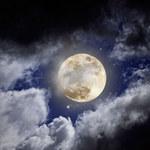 SpaceX zapowiada pierwszy turystyczny lot wokół Księżyca