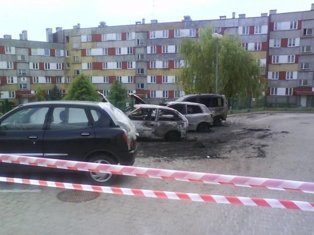Spalone auta...