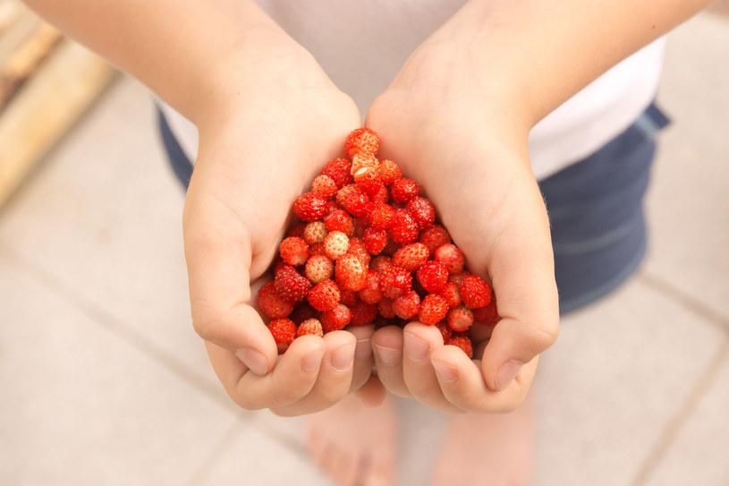 Spożywanie zbyt dużej ilości owoców, może mieć przykre konsekwencje /123RF/PICSEL