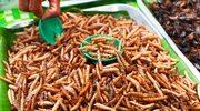 Sprawdź, dlaczego powinniśmy jeść… owady
