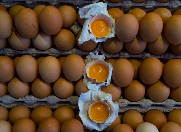 Sprawdź, które jajka są najlepsze. /123RF/PICSEL