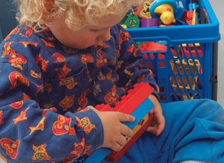 Sprawdzoną zabawką są różnego rodzaju klocki /INTERIA.PL
