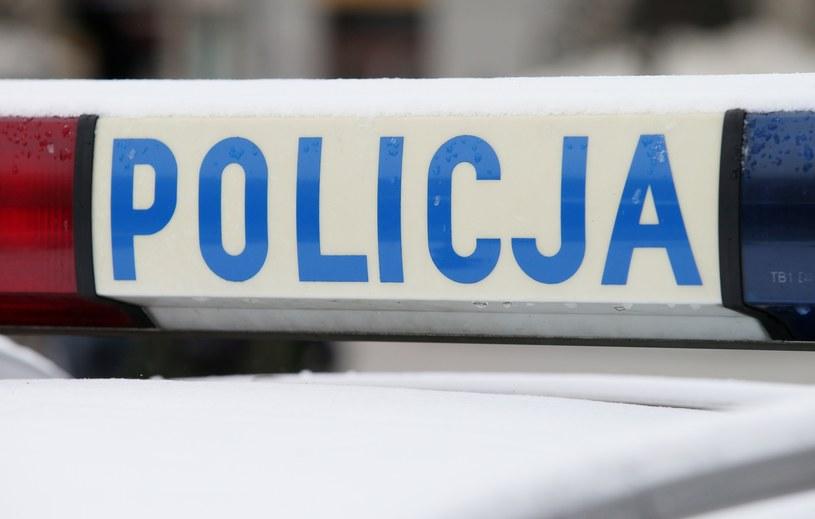 Sprawę wykryli policjanci z wydziału zwalczającego cyberprzestępczość /Damian Klamka /East News
