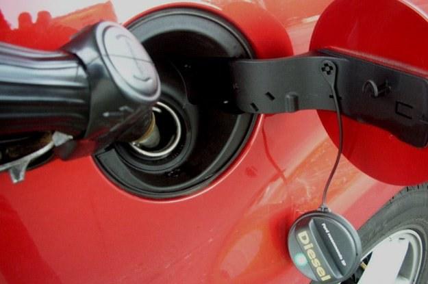 Stare technologicznie silniki Diesla zaakceptują pewien dodatek benzyny, ale... /INTERIA.PL
