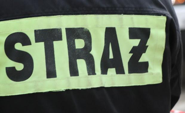 Stary Kostrzynek: Trzech wędkarzy wpadło do wody, trwa akcja ratunkowa