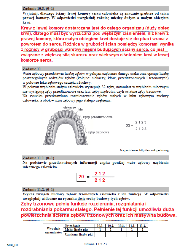 str. 13 /CKE /INTERIA.PL