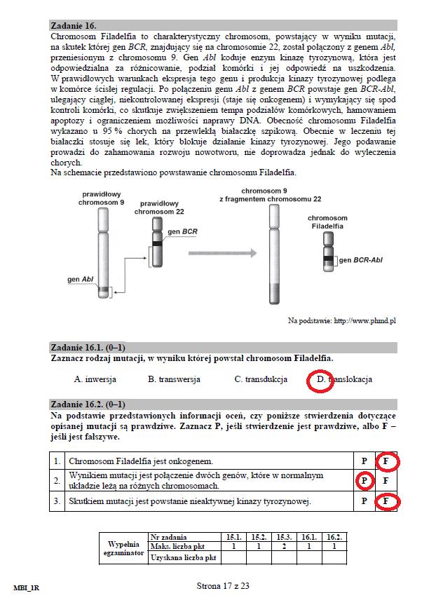 str. 17 /CKE /INTERIA.PL
