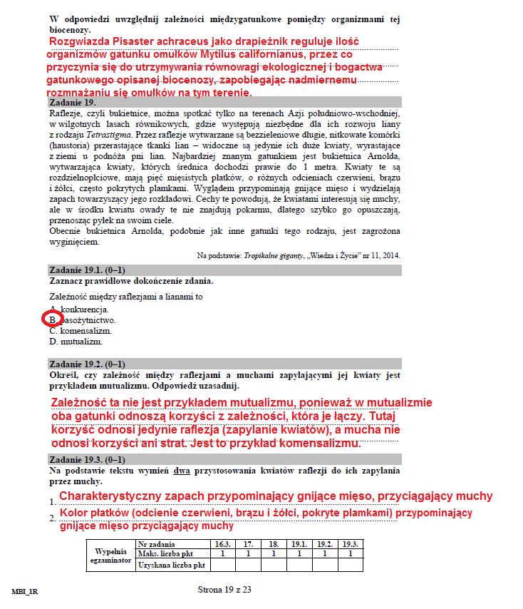str. 19 /CKE /INTERIA.PL