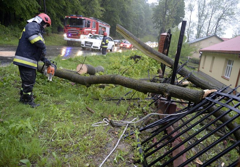 Strażacy usuwają drzewo, które wiatr powalił na drogę i ogrodzenie domu pomocy społecznej w Przemyślu. Na Podkarpaciu wieje silny wiatr i intensywnie pada deszcz /PAP