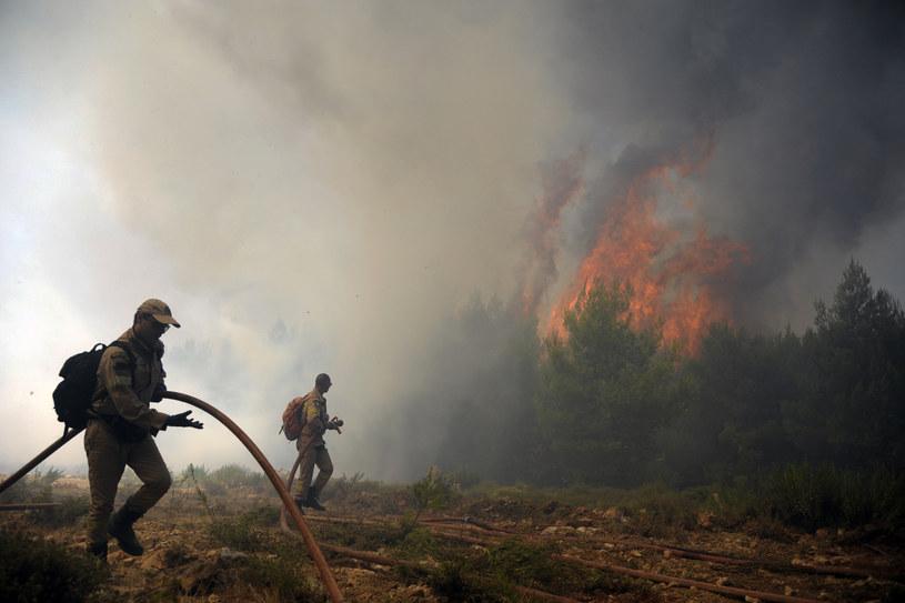Strażacy walczą z trzema dużymi pożarami w Grecji /Michalis KARAGIANNIS /AFP