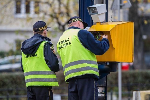 Straże miejskie nadal będą zajmować się fotoradarami  /Fot: Lech Gawuc /Reporter
