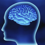 Stworzono mikroczipy naśladujące działanie synaps