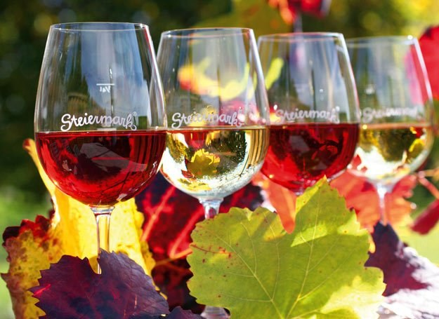 Styryjskie wina zyskują uznanie na całym świecie fot. Steiermark Tourismus /materiały prasowe