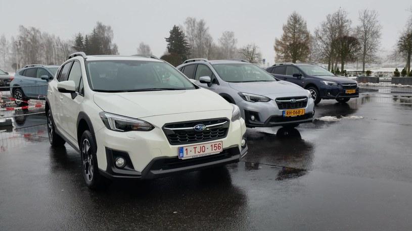 Subaru XV /INTERIA.PL