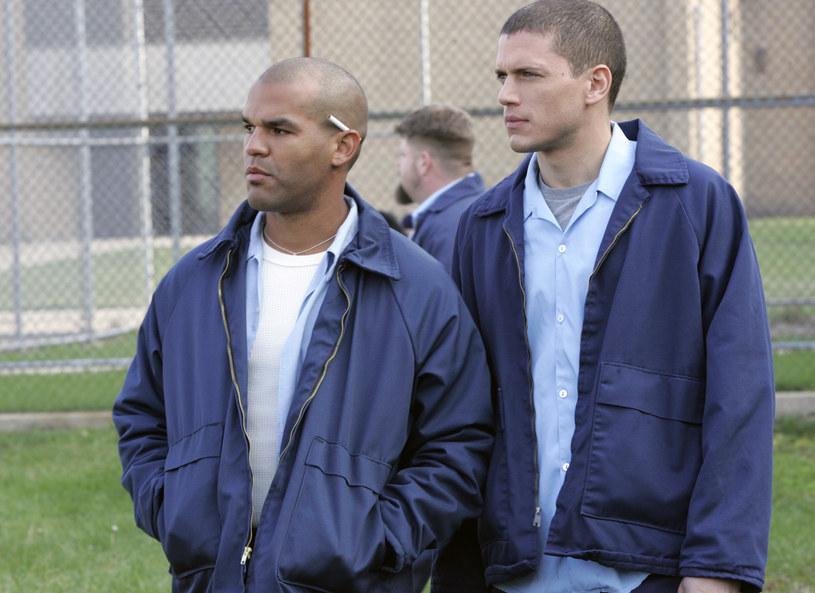 Sucre, Michael Scofield /TVN