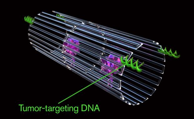Sukces nanorobotów w walce z rakiem