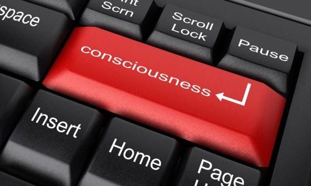 Świadomość zamknięta w komputerze? Za kilkanaście lat być może będzie dało się to zrobić jednym przyciskiem /©123RF/PICSEL