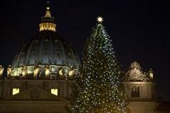 Światełka na choince w Watykanie