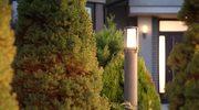 Światło w ogrodzie