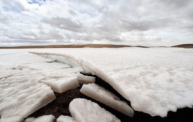 Syberyjskie pustkowia kryją w sobie potencjalne zagrożenie dla ludzkości /AFP