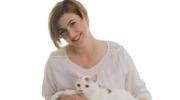 Sybilla Berwid-Wójtowicz: Wszystko o żywieniu kota