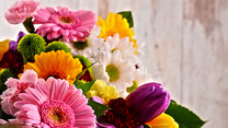 Symbolika kolorów kwiatów. Jaka barwa kojarzona jest ze zdradą?