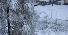 Sypnęło śniegiem na początku tygodnia