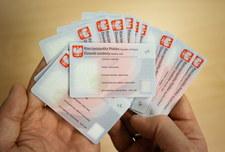 System Rejestrów Państwowych: Kpina i kolejki