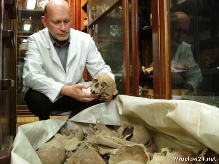 Szczątki i kości trafiają na wrocławską sądówkę / fot. Jacek Bomersbach /wroclaw24.net