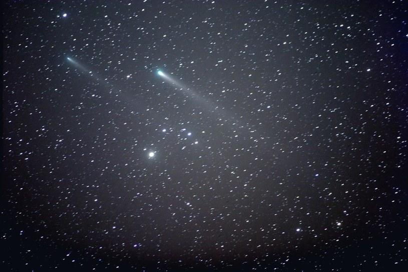 Szczątki komety 73/Schwassmann-Wachmann /materiały prasowe