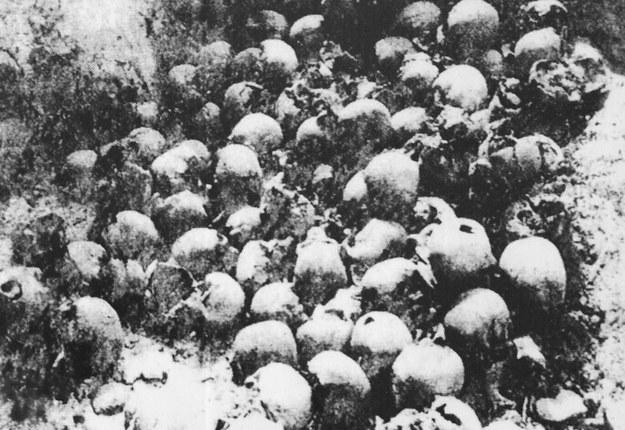 Szczątki mieszkańców Woli Ostrowskiej na Wołyniu zamordowanych przez bandę UPA /reprodukcja Marek Skorupski /Agencja FORUM