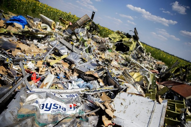 Szczątki samolotu /PAP/EPA/JERRY LAMPEN /PAP/EPA