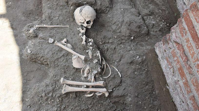 Szczątki znalezione w Pompejach /fot. Parco Archeologico Di Pompeii /materiały prasowe