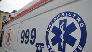 Szczecin: Auto uderzyło w drzewo. Dwie ofiary