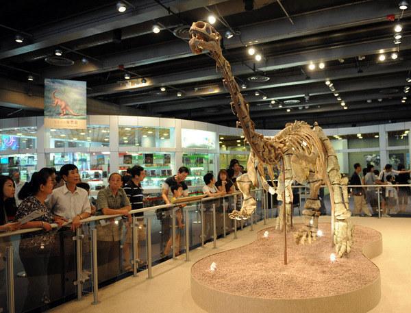 Szkielet dorosłego lufengozaura /AFP