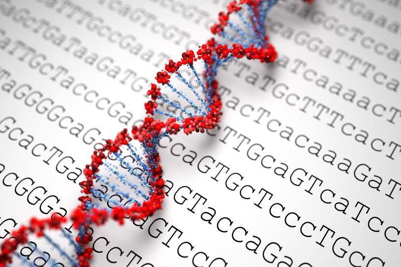 Sztuczne ludzkie DNA powstanie w ciągu 5 lat /123RF/PICSEL