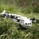 Szwajcarzy stworzyli mechaniczną salamandrę