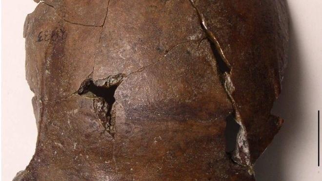 Ta czaszka liczy sobie 6000 lat /fot. ARTHUR DURBAND /materiały prasowe