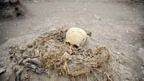 Tajemnica jedenastu szkieletów odkryta!