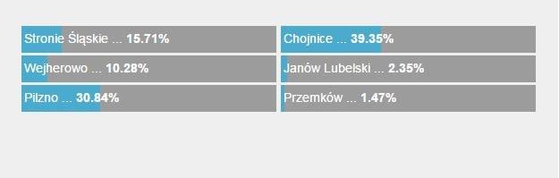Tak głosowaliście na Chojnice! /RMF FM /Zrzut ekranu