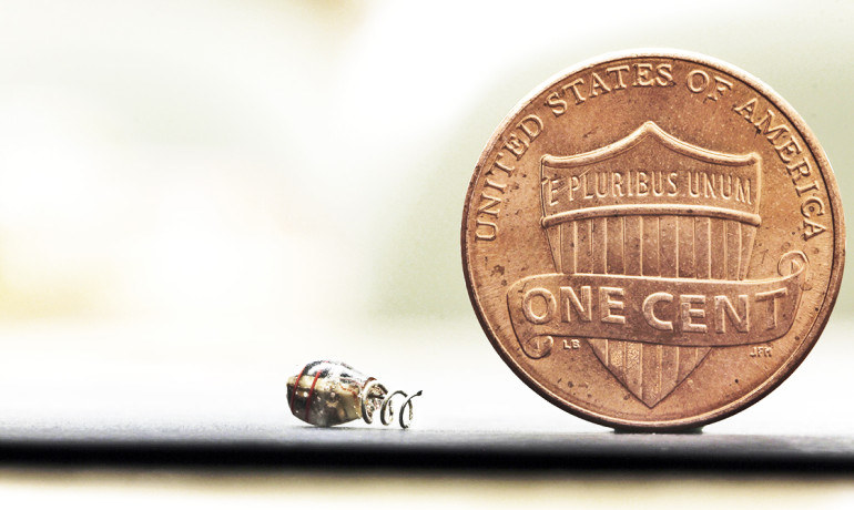 Tak mały jest nowo opracowany stymulator pracy serca /materiały prasowe