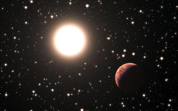 Tak może wyglądać jedna z nowoodkrytych planet /ESO/L. Calçada /RMF24